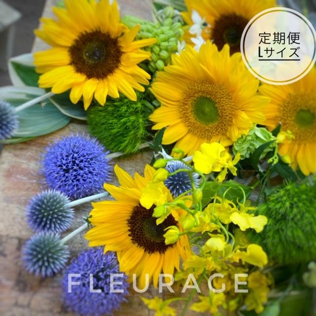 お花の定期便💐