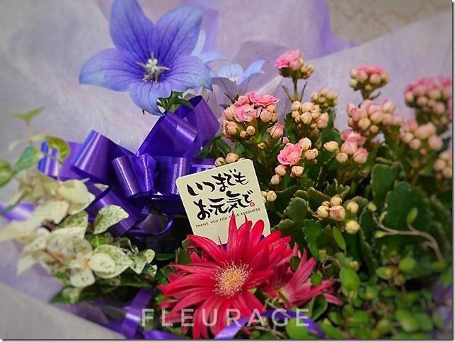お花で伝える感謝の気持ち